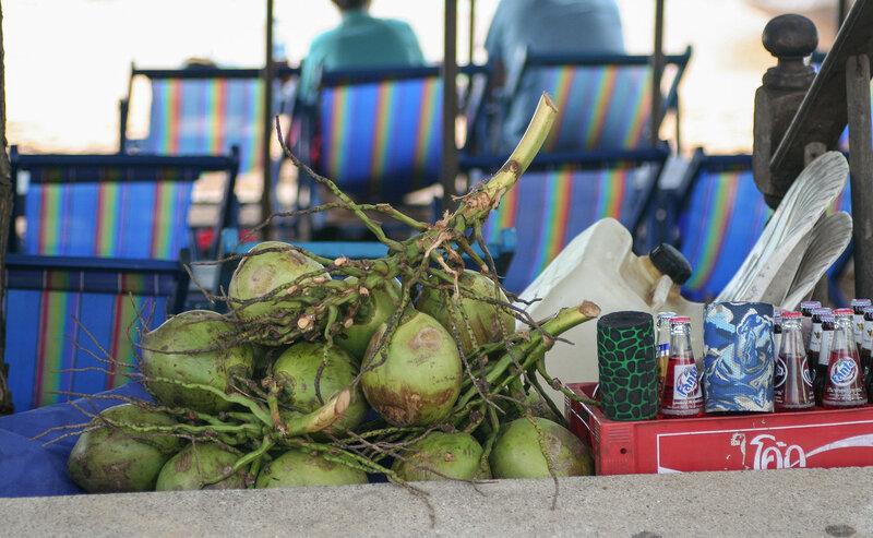 Ветка с кокосами в пляжном заведении