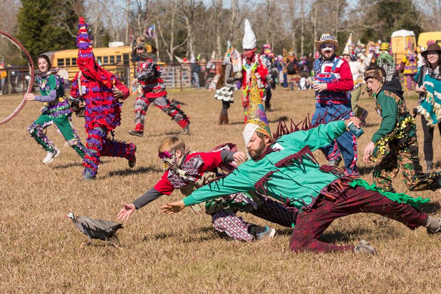 Cajun Mardi Gras revelers chase a guinea hen during the Faquetaique Courir Mardi Gras chicken run on