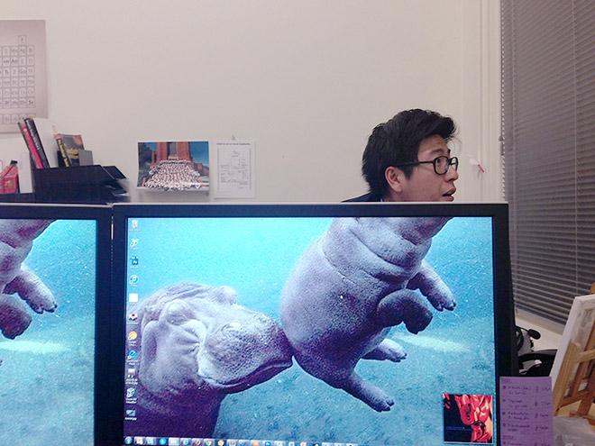 Office Safari.jpg
