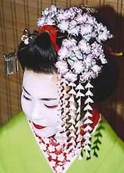 Канзаши – длинные шпильки, украшения, заколки в традиционной японской прическе майко и гейши. История, описание по месяцам года и видео мастер-класс
