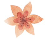 3_Floral (112).png