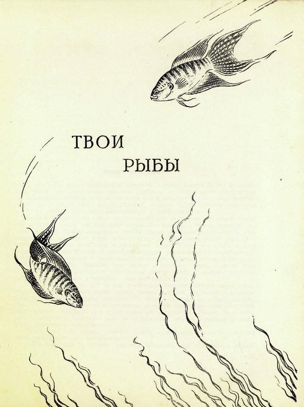 Image001 (81).jpg