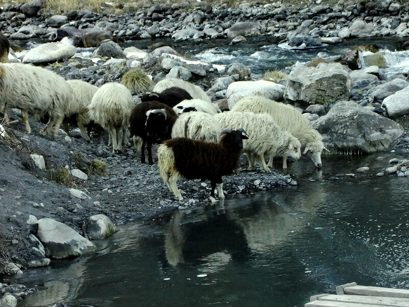Вкусна холодная водичка