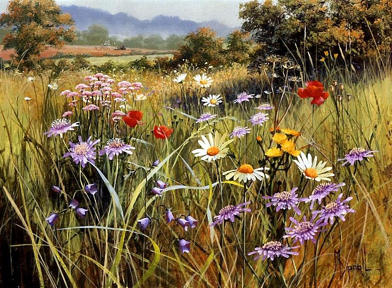 Картинки летние радости о природе