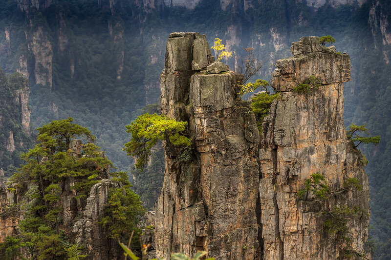 Парк Хуаншань (Желтые горы).