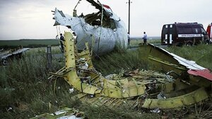 Нидерланды назвали причины крушения малазийского авиалайнера
