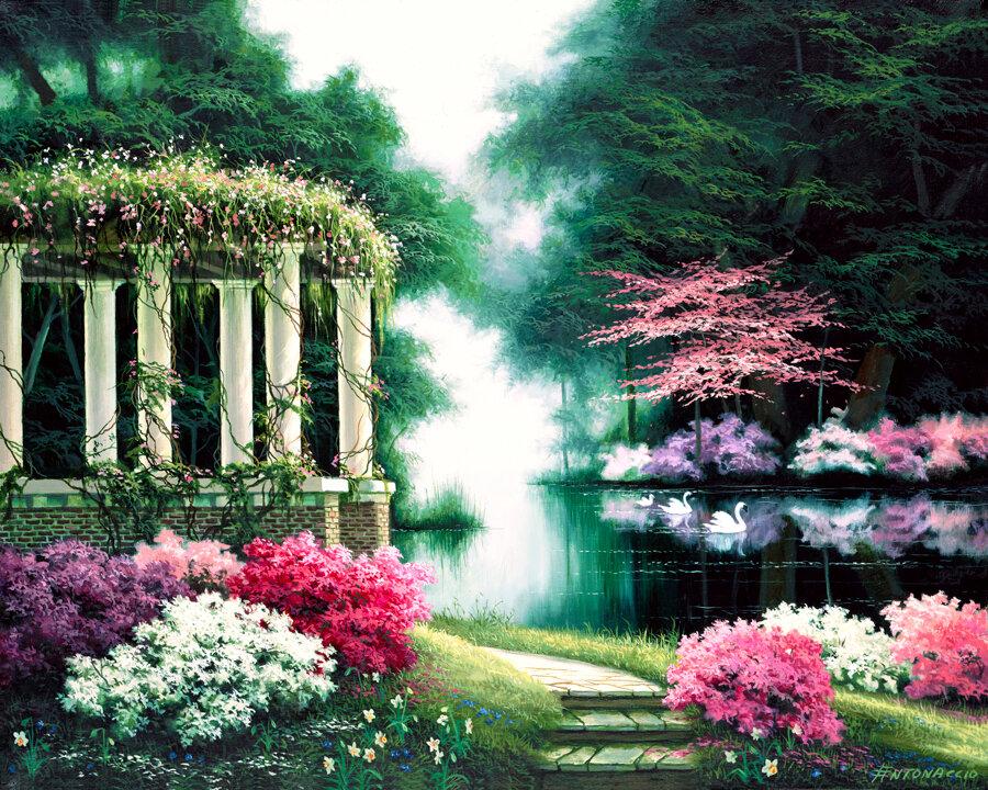 Сад моей души фото