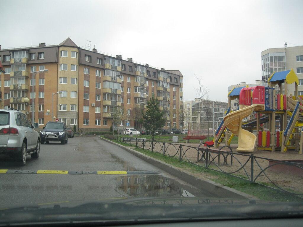 Случай в «Новой Скандинавии»