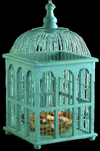 """Tubes """"cages oiseaux"""""""