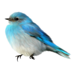 little blue birds (60).png