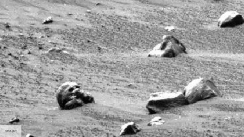 НаМарсе найдены улитки
