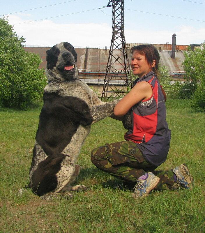 8.05-19.05.2013 тренлагерь в Донецке 0_9d82b_81be0409_XL