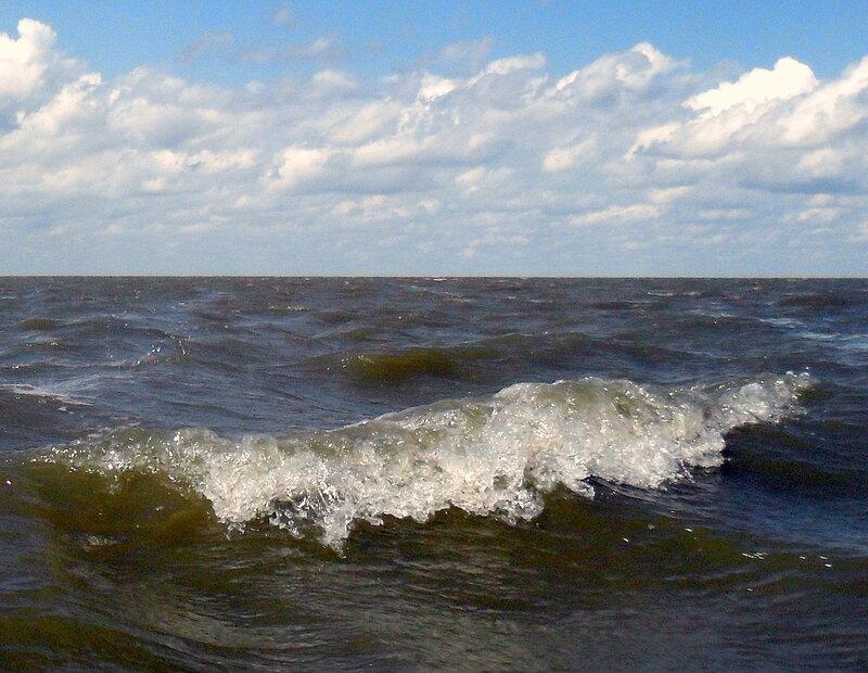 В море, волна