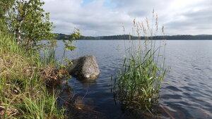 Озеро Сайма (Руоколахти)