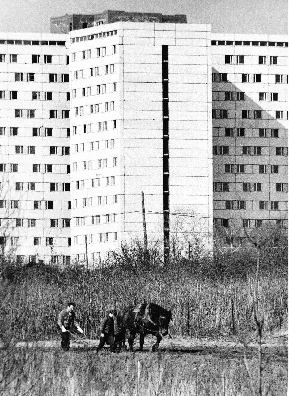 Москва, Юго-запад,1981 г.