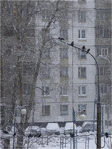 http://img-fotki.yandex.ru/get/6702/131884990.3e/0_9737f_511b0a1c_-1-M.jpeg.jpg