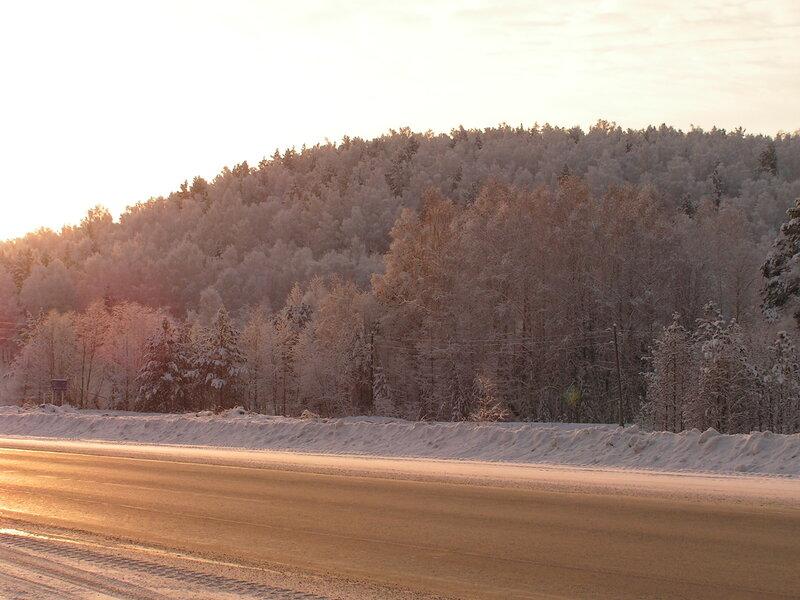 Занесённые снегом деревья в лучах восходящего солнца (02.04.2013)