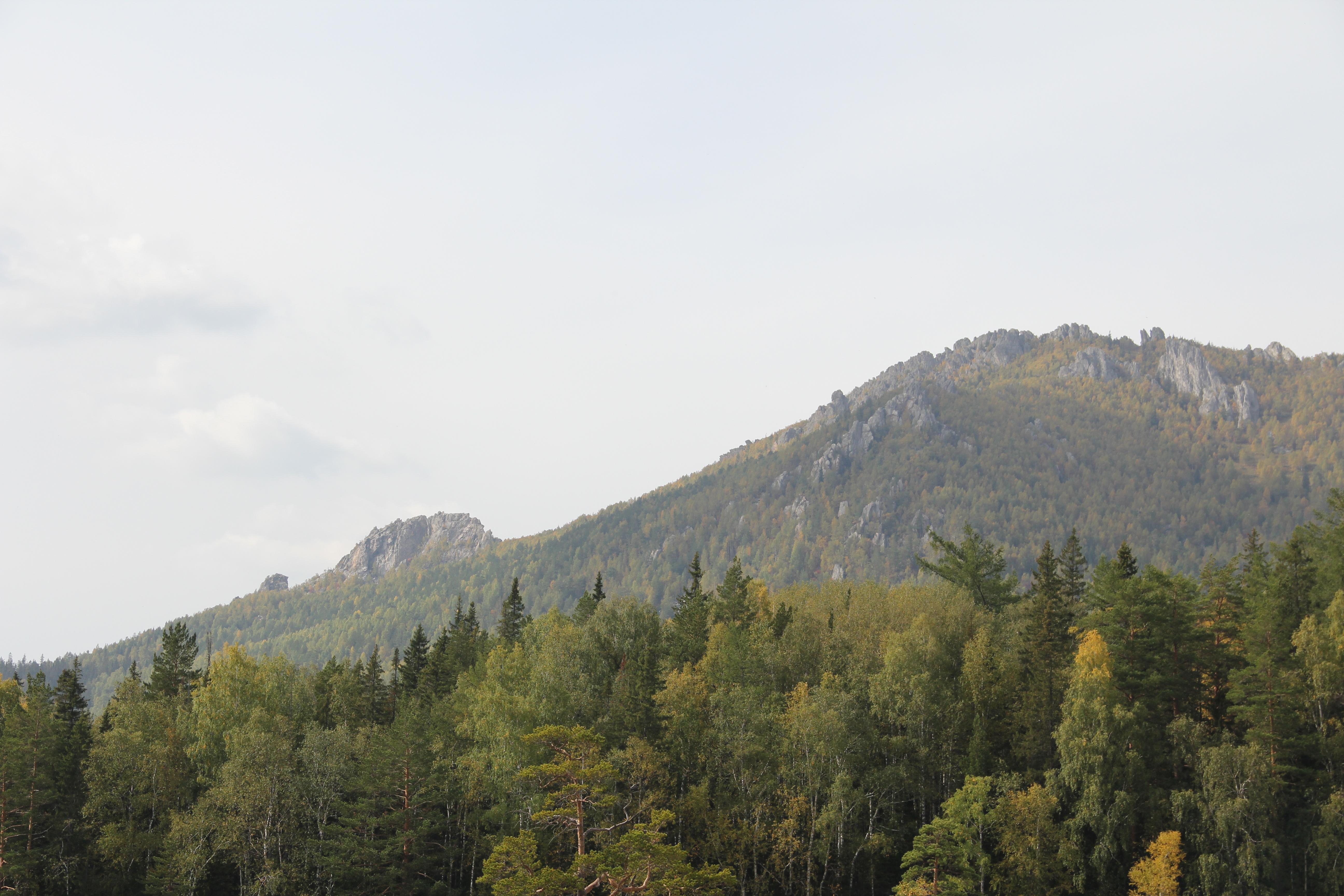 Авот наюжной вершине (ееназывают Перья) курумов гораздо меньше (30.09.2014)