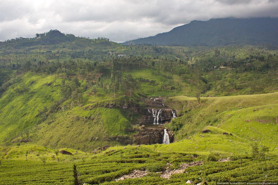 Шри-Ланка_Чайный замок_32