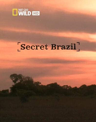 Неизвестная Бразилия