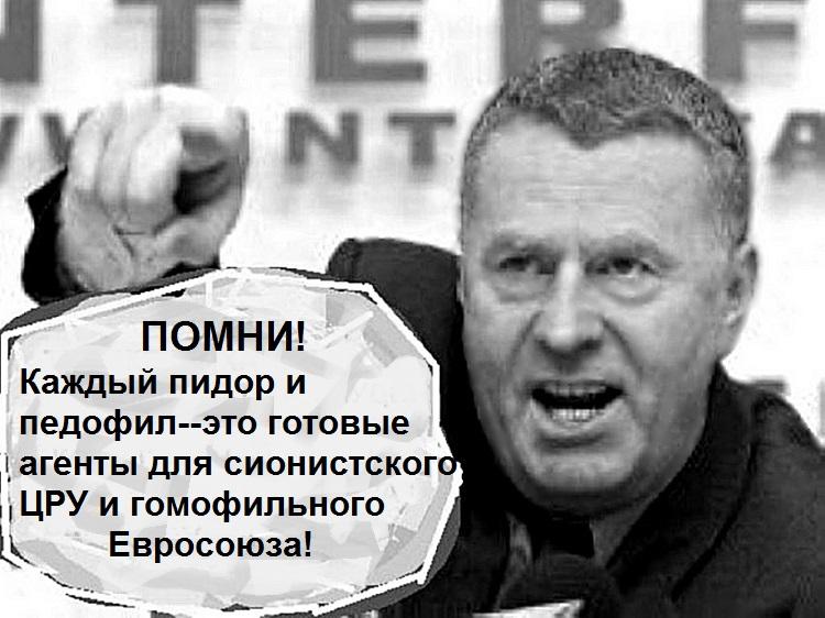 Жириновский, гомофобия.jpg