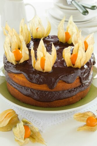 Pumpkin cake with chocolate cream.