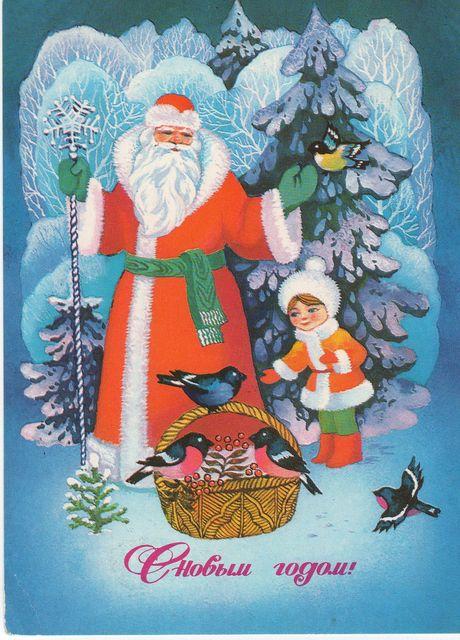 Дед Мороз принес подарки птицам. С Новым годом! открытки фото рисунки картинки поздравления