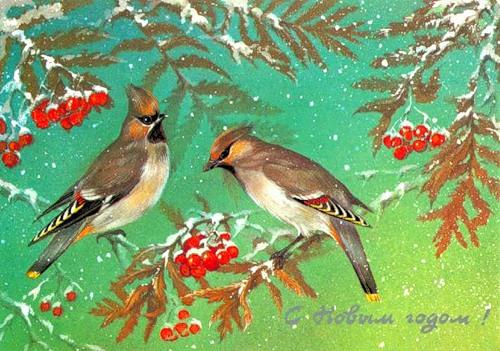 С Новым годом! Птицы на гроздьях рябины