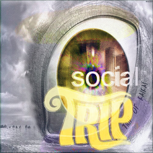 social trip