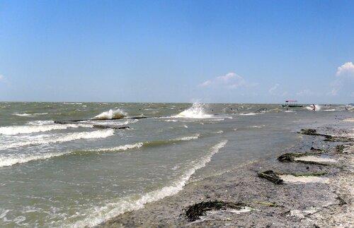 Свежий ветер от моря