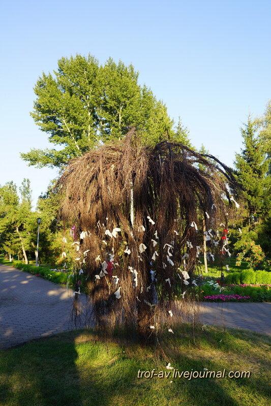 Искуственное дерево, Омск