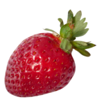Annevalerie_strawberryswing_el54.png
