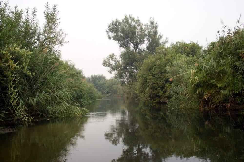 Река Кудьма