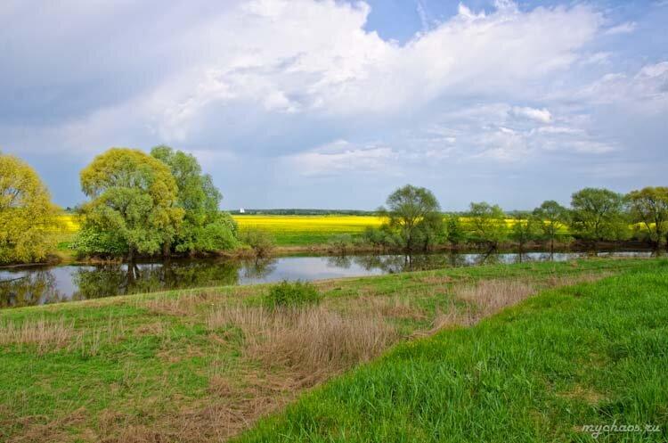 Пейзаж и желтый луг