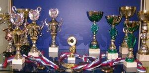 В российских сборных – 119 спортсменов из Приморья