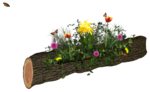 LizquisScraps_Fairia_tree1.png