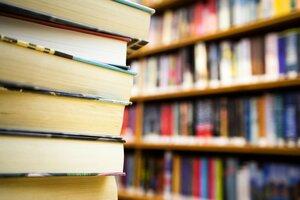 Школы Приднестровья будут учиться по российским книгам