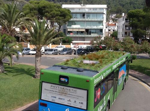 Зеленые крыши автобусам - чистый воздух городам
