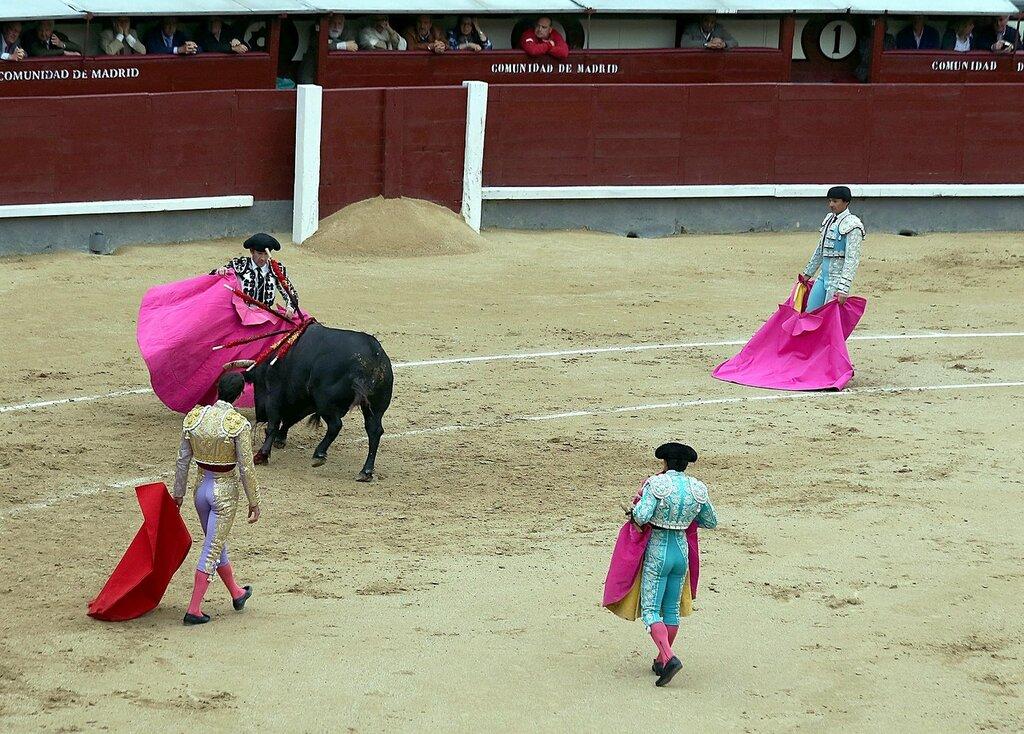 Мадрид. Коррида