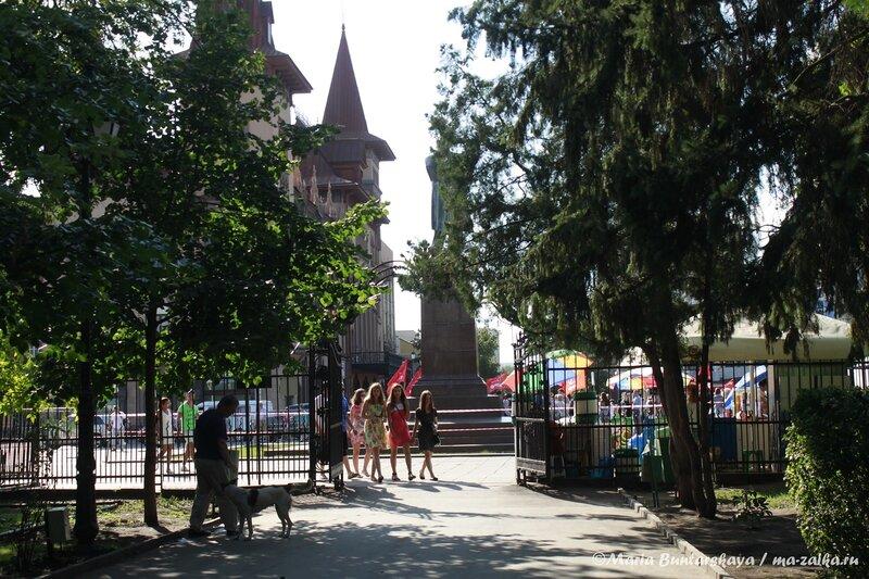 Митинг в защиту Центра восстановительной медицины и реабилитации, Саратов, площадь Н.Г.Чернышевского, 17 июля 2013 года