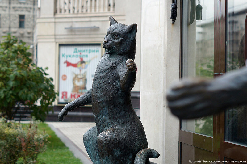 Осень. Театр кошек Куклачева. 15.10.15.06..jpg