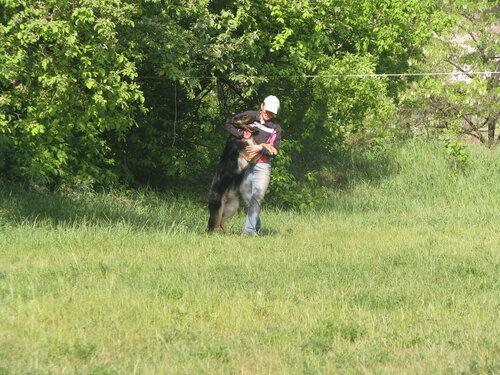 8.05-19.05.2013 тренлагерь в Донецке 0_9d113_c50d512f_-1-L