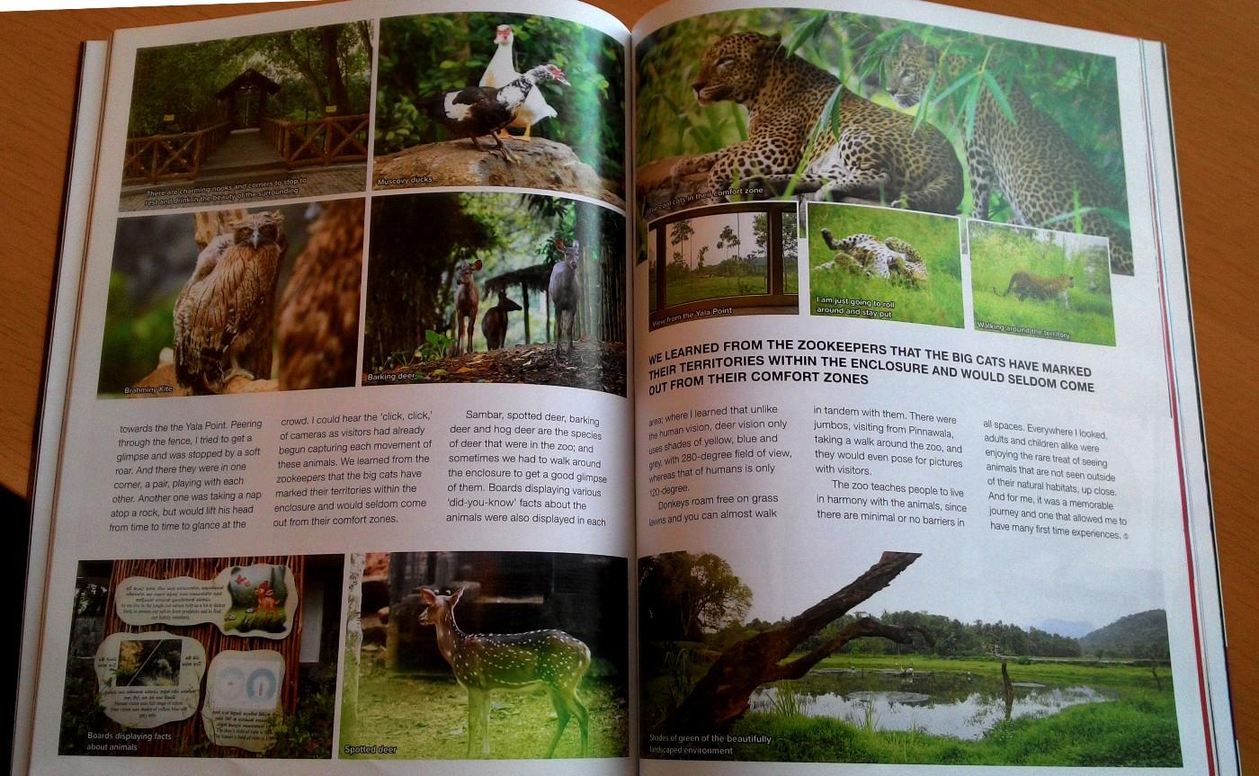 """В зоопарке """"Пиннавела"""" (Open Air National Zoological Gardens at Pinnawala), видимо, можно снять красивые виды с животными. Почти, как в национальном парке Яла (Yala National Park), куда мы попали на фотосафари во время своего путешествия на арендованном автомобиле."""