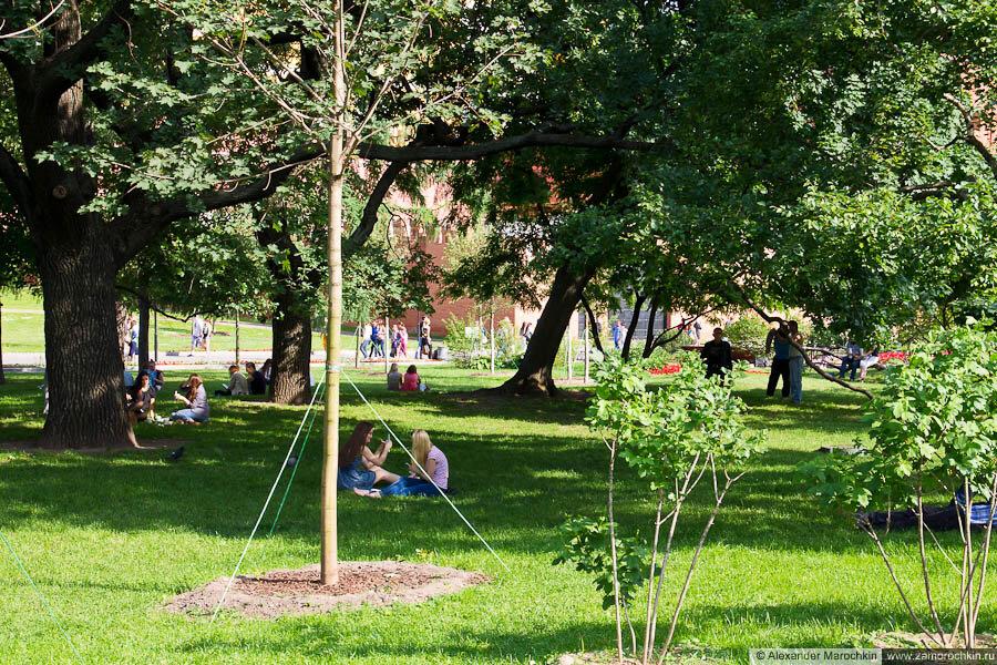 Газон в Александровском саду
