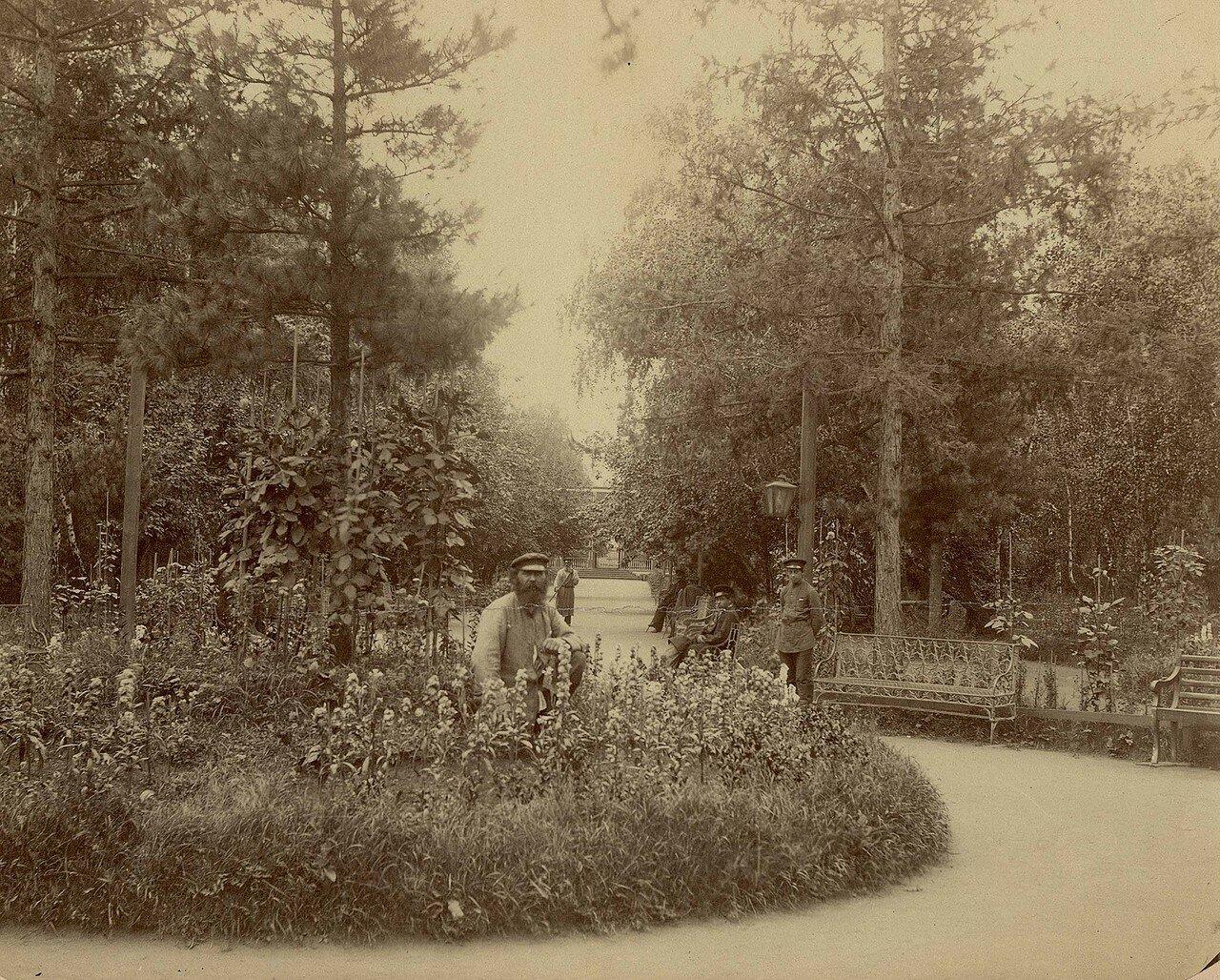 Главная аллея городского сада. 1890-е