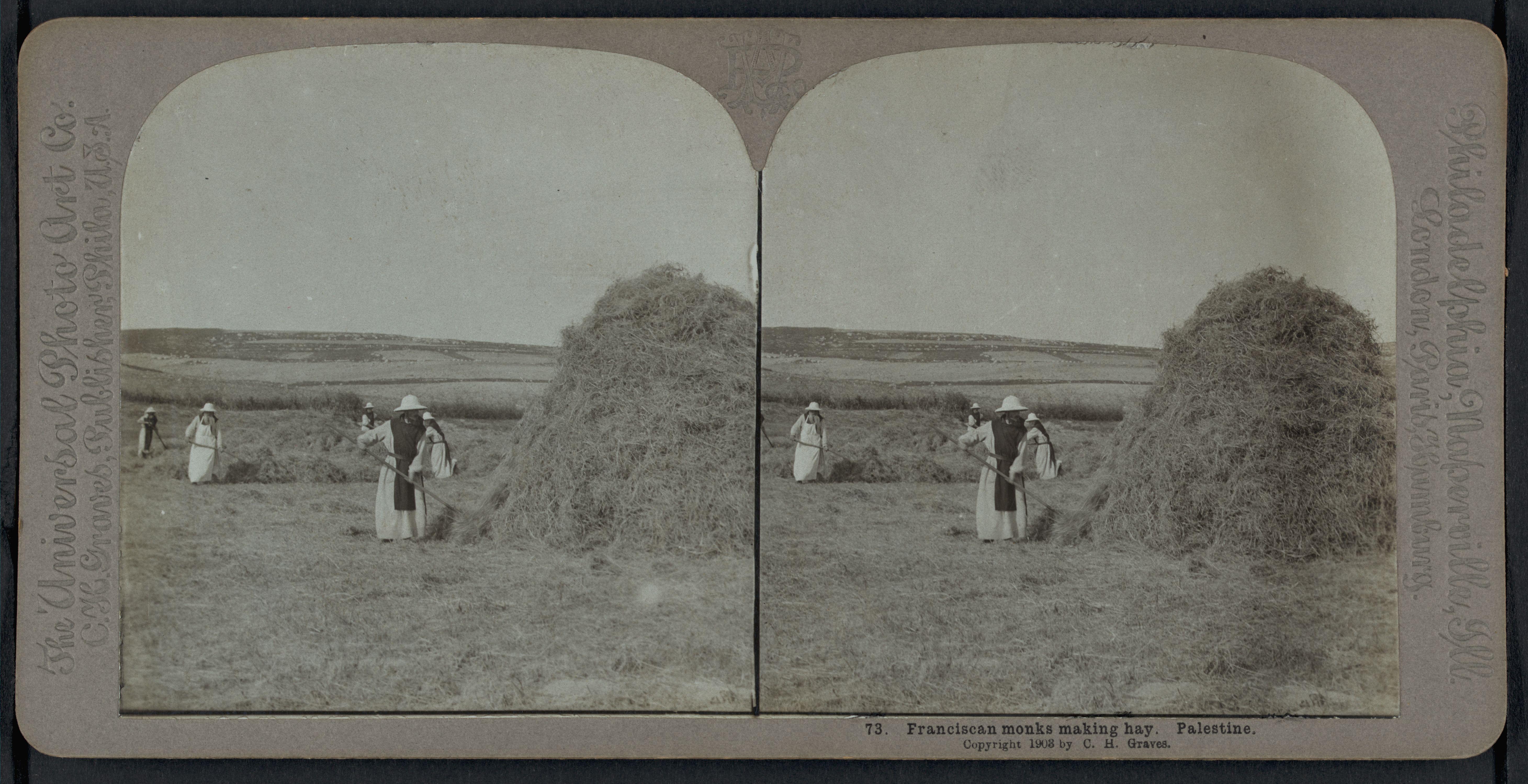 73. Монахи-францисканцы собирают сено