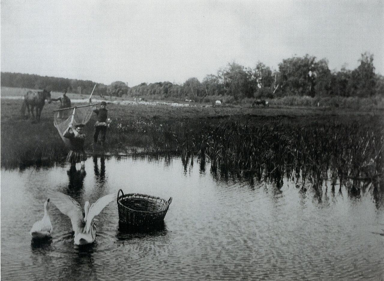 Ловля. 1890-е. Фото А.С. Мазурина