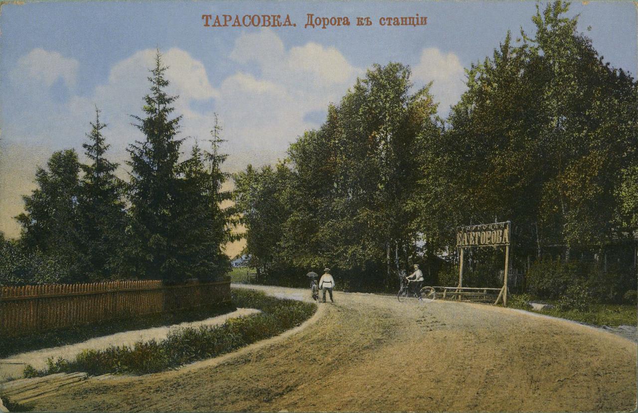 Окрестности Москвы. Тарасовка. Дорога к станции