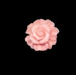 Palvinka_FlowerEssence_flower6sh.png