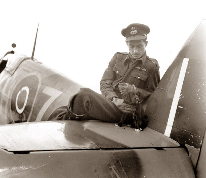 PO Willie Lane of 403 Squadron RCAF poses with the flight mascot, Susan. Lane was KIA in a dogfight above France shortly after this photo. (May, 1943)